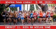 sowa220